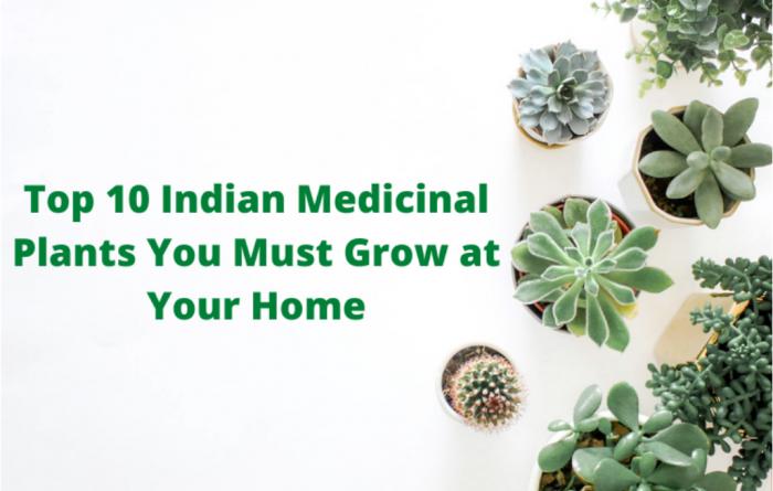 Indian Medicinal Plants